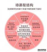 IB 课程的课外活动是什么